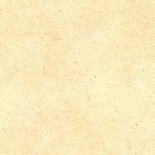 ssfs_paper_texture_8
